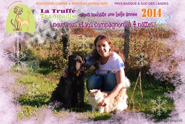 La Truffe Tranquille vous souhaite une belle année 2014