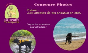 concours2016